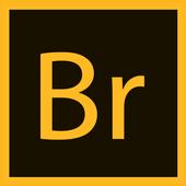Adobe bridge cc shortcut key icon
