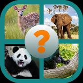 Name The Animal App icon