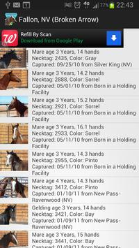 BLM Mustang Adoption Gallery poster
