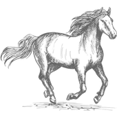 Horse Racing Latest News icon