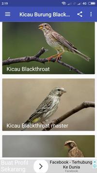 Kicau Burung Blackthroat screenshot 1