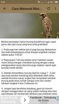 Kicau Burung Blackthroat screenshot 5