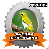 TOP Kicau Pleci icon