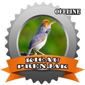 TOP Kicau Prenjak icon