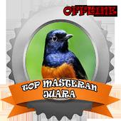 TOP Masteran Juara icon