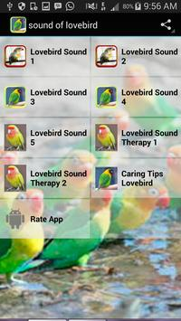 Sound of Lovebird poster