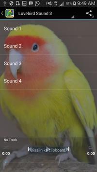Sound of Lovebird screenshot 3