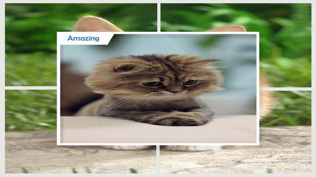 Cute Animals Live Wallpaper screenshot 3