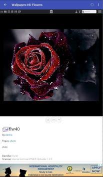 100,000+ Amazing Wallpapers HD screenshot 3