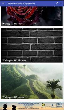 100,000+ Amazing Wallpapers HD screenshot 2