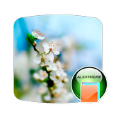 Theme Spring icon