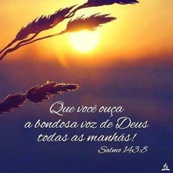 Frases Evangelicas E Fotos For Android Apk Download