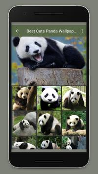 Cute Panda Wallpaper poster
