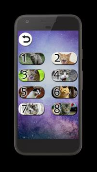 Cat Sounds: Kittens & Cats apk screenshot