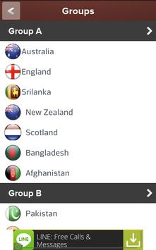 Cricket Worldcup 2015 screenshot 3