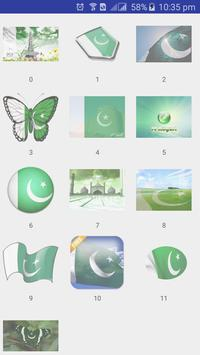 Pak Flag on Face poster
