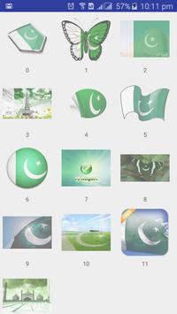 Pakistan Flage Face poster