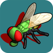 Fly Free icon