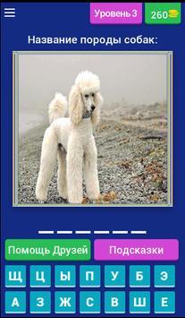 Сможешь угадать породу собак? screenshot 3