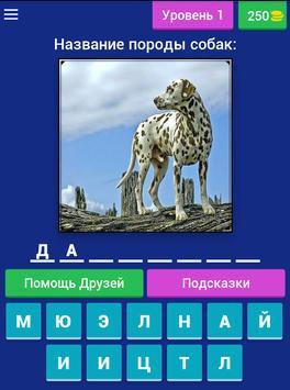 Сможешь угадать породу собак? screenshot 14