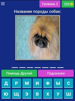 Сможешь угадать породу собак? screenshot 16
