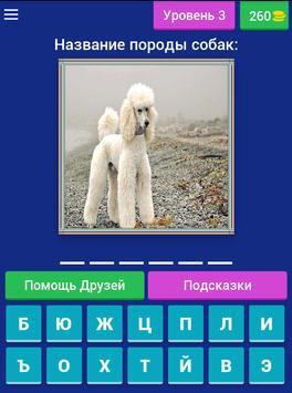 Сможешь угадать породу собак? screenshot 17