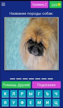 Сможешь угадать породу собак? screenshot 2
