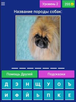 Сможешь угадать породу собак? screenshot 9