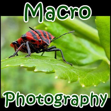Macro Photography poster