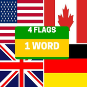 4 Flags 1 Word icon