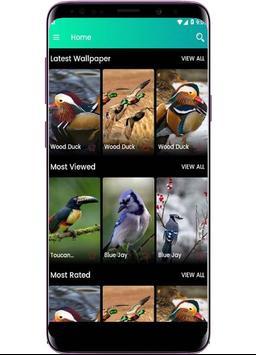 Bird Wallpapers - Full HD screenshot 2