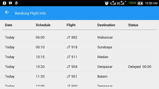 Bandung Flight Info screenshot 4