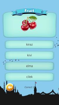 W Quiz Turkish Beginner apk screenshot