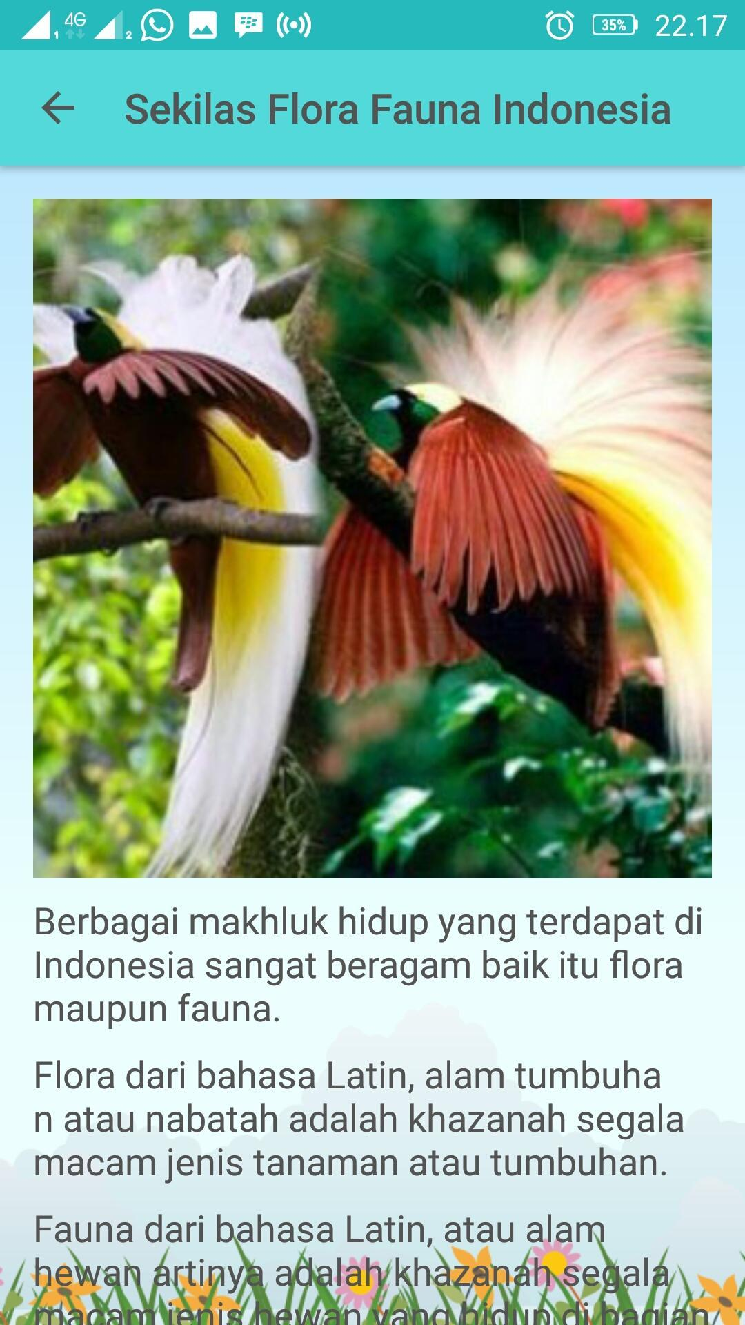 Flora Dan Fauna Indonesia For Android Apk Download
