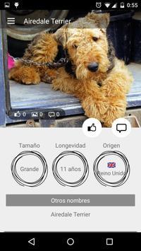 Perros razas perrunas screenshot 1