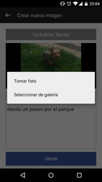Perros razas perrunas screenshot 4