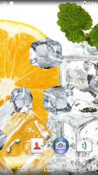 Fruits And Ice Cubes poster