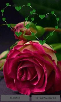 Green Heart Rose LWP poster