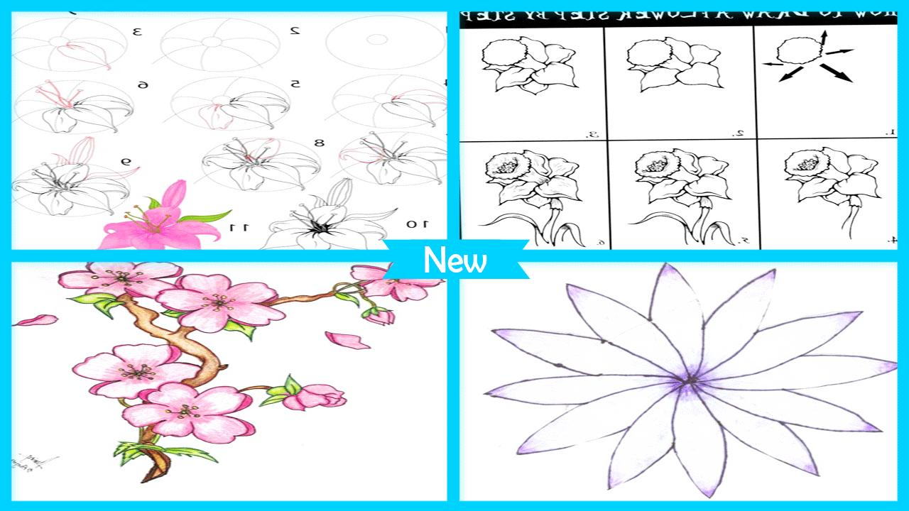 Drawing Flower Sketches Step By Step For Android APK