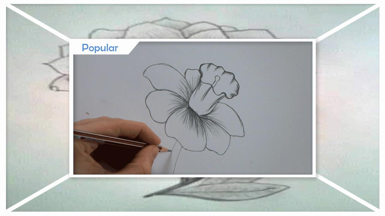 Drawing Flower Sketches Step By Step For Android APK Download