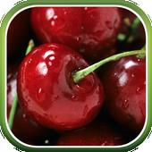 Berries Live Wallpaper icon