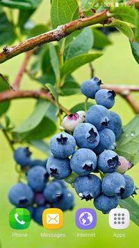 Berries Live Wallpaper poster