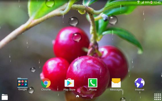 Berries Live Wallpaper apk screenshot