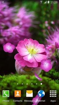 Cherry Blossom Live Wallpaper apk screenshot