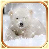 Polar Bear Wallpaper HD icon