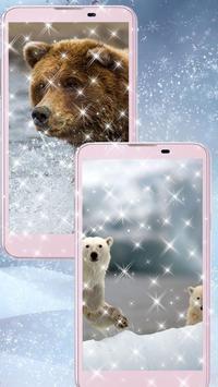 Polar Bear Wallpaper HD poster