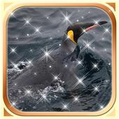 Penguin Wallpaper HD icon