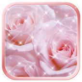 Pink Rose Wallpaper HD icon
