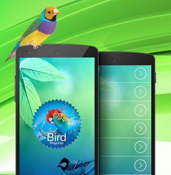 Bird ringtones & sounds apk screenshot