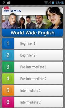 World Wide English Pro poster